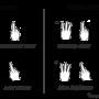 Leap Motion recognized gesture