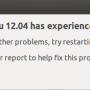 Ubuntu system apport